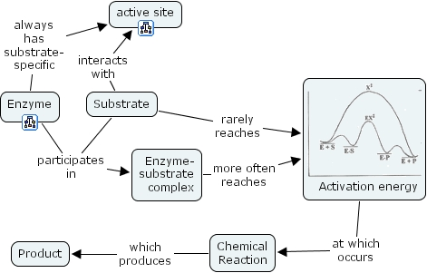 Chemical Communication Concept Map