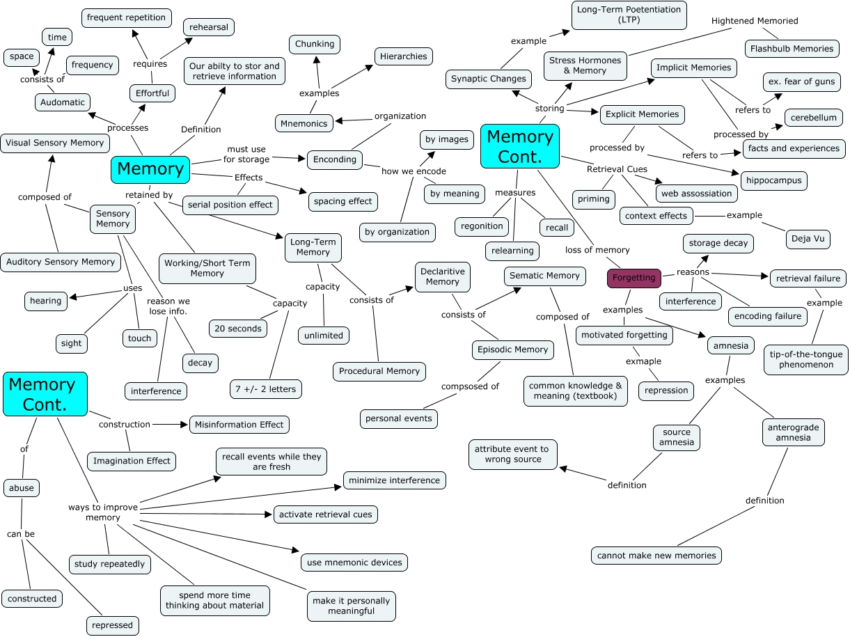 Memory Concept Map.Memory Concept Map For Ch 8