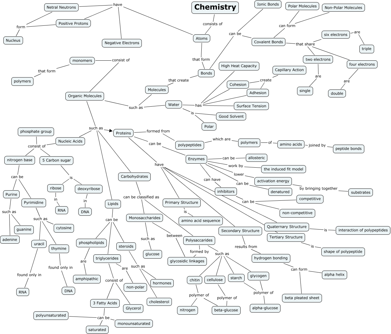 Image Result For Concept Map Of The Branches Of Science