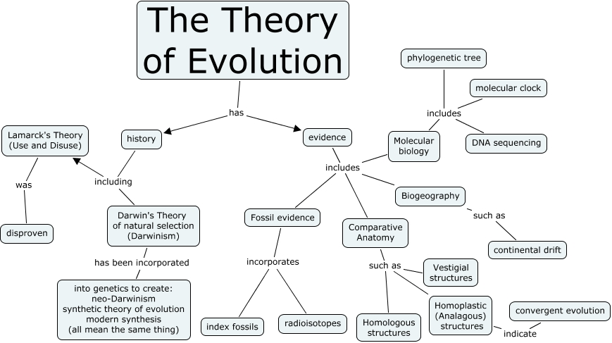 Image result for theory of evolution darwin
