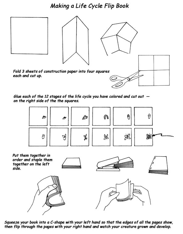 union 8 cycle computer instructions