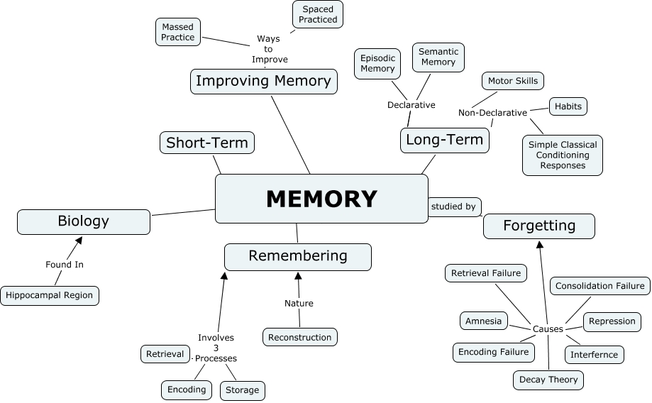 Memory Concept Map.Adam Prudhomme Memory