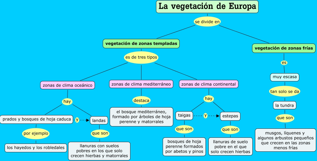 La vegetaci n de europa for Arboles de hoja perenne para clima continental