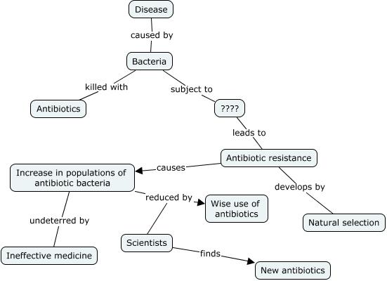 Concept Map Bacteria.Bacteria Evolution
